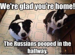 rus-dog-joke